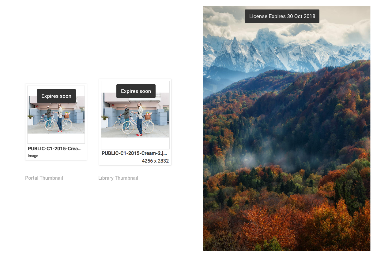 On the left, there are two dark grey containers with white text that reads: expires soon. The containers are on top of a thumbnail image of a woman holding a bicycle. On the right, there is another dark grey container with white text reading: License Expires 30 Oct 2018. This container is over the top of an image of snowy mountains and an autumnal forest in the foreground.